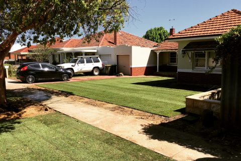 Empire Zoyzia and Reticulation in Inglewood